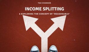 Income Splitting Reasonable